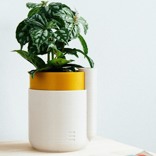 3D Printed Plant Accessories