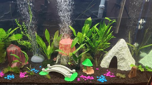 petg filament fit for aquarium miniatures
